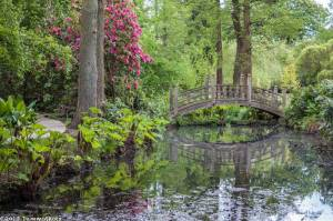Winterbourne House and Gardens