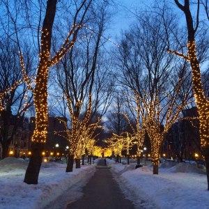 Boston snow and lights